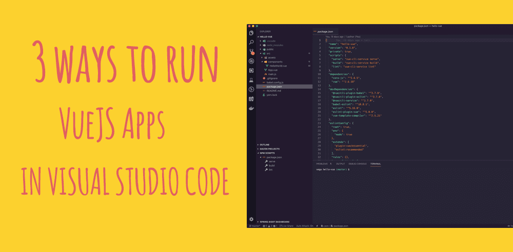 3 ways to run VueJS applications from Visual Studio Code